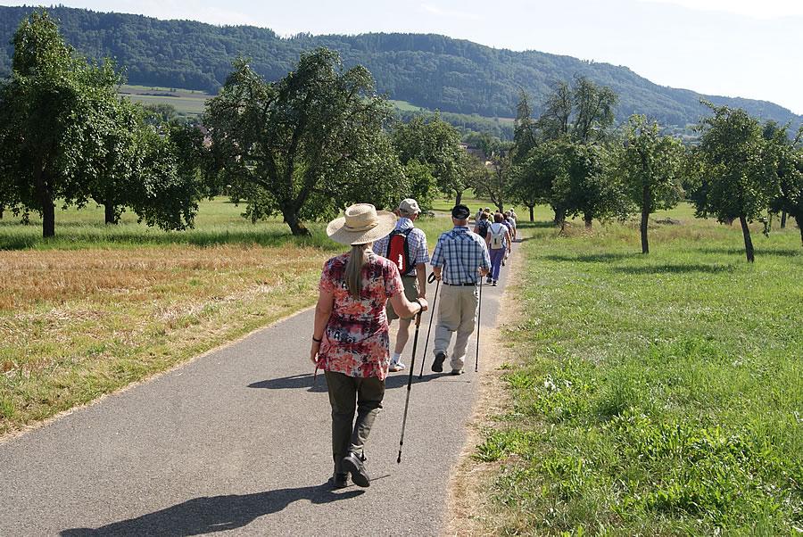 Eine Wandergruppe unterwegs in Richtung Schienerberg.