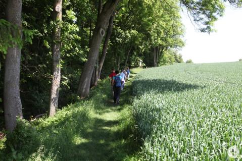 Die Wanderwege des Naturlehrpfades beim Rosenegg sind nicht für Radfahrer gedacht.