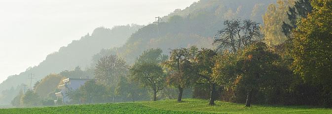 Banner Silhouette Rosenegg Bild: Schmider