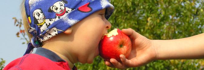 Kind beißt in einen Apfel. Quelle: www.morguefile.com