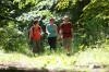 Drei Wanderer auf dem Naturlehrpfad Rosenegg. Foto: Ulrike Klumpp Fotografie.