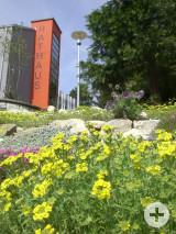 Blick auf den roten Rathausaufzugsturm im Frühling.