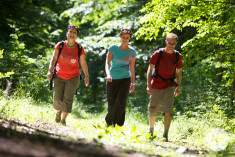 Drei Wanderer am Rosenegg
