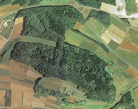 Luftbild vom Hardberg in Worblingen.