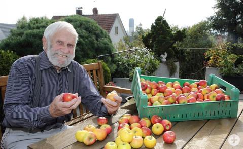 Mehr als zufrieden: Eine Apfelernte wie in diesem Jahr hat der 90 Jahre alte Werner Ruf zuletzt in Kindertagen miterlebt. Bild: Tesche, Sabine